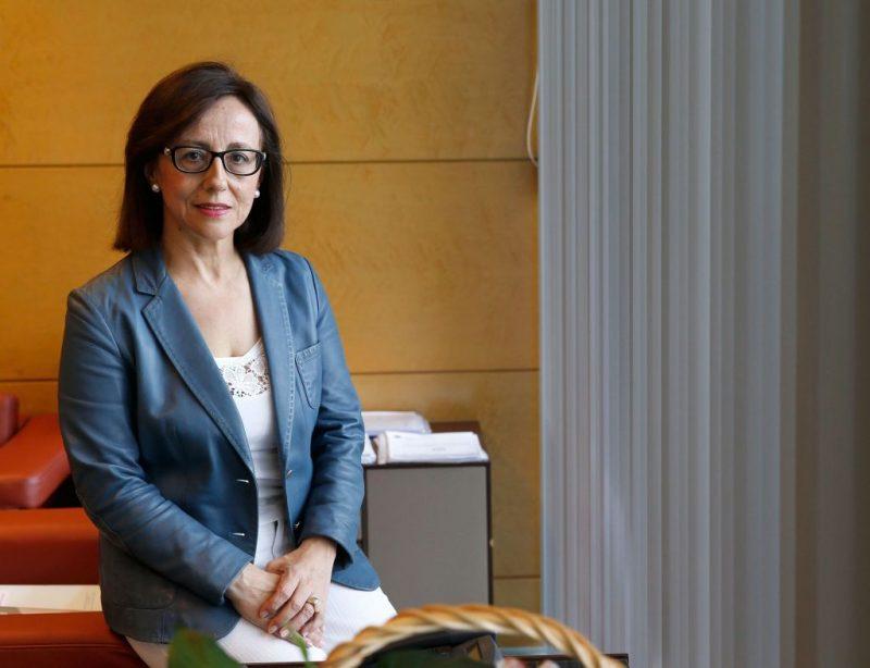 """La Coordinadora Ecologista  de Asturias valora de """"nefasta"""" la política del Psoe"""