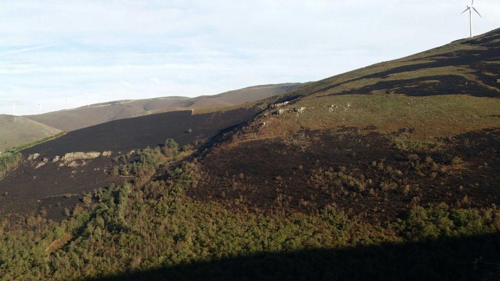 Controlados los 8 incendios forestales que se registran en Asturias