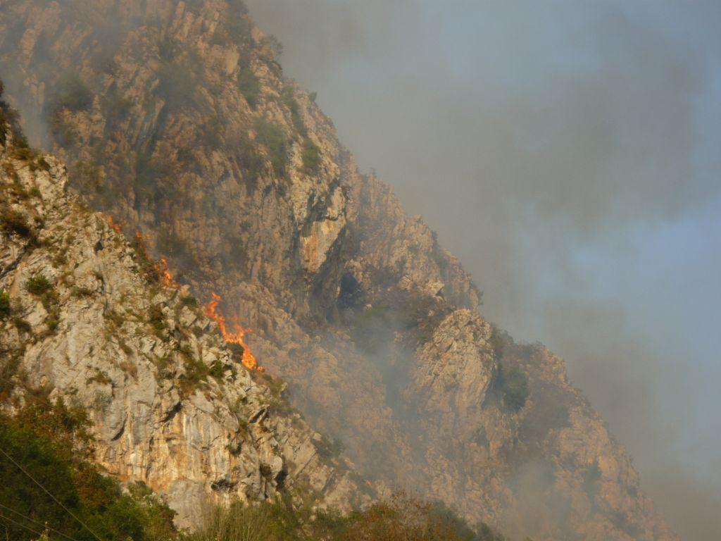 La Coordinadora Ecologista de Asturias insiste en la necesidad de acotar al pastoreo el monte quemado
