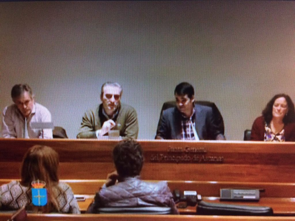 García Parrondo comparece en la Junta General para informar sobre la tramitación del proyecto de mina de arcilla blanca en Los Praducos (Barcia, Valdés)